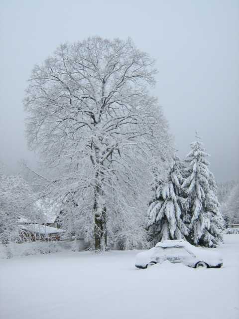 Zima v Kraskově